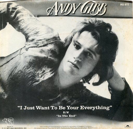 "ANDY GIBB ""I just want to be your everthing"""